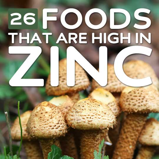 26 foods high in zinc