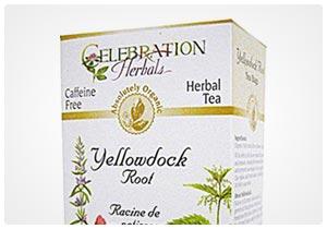 yellow dock tea