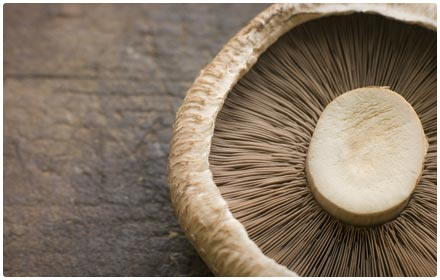 portobello mushrooms