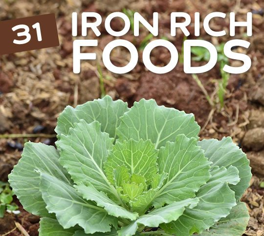 31 iron rich foods for vegetarians vegans health wholeness great list of iron rich foods for vegetarians vegans and anyone who wants to get workwithnaturefo