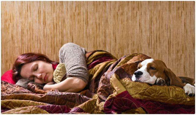optimize environment for sleep