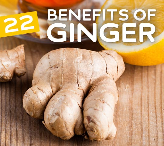 22 Benefits of Ginger- protects against Alzheimer's disease, relieves tired muscles, improves circulation and much more.