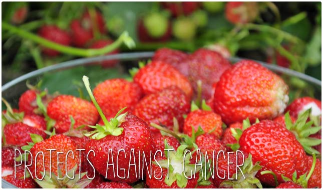 protects against cancer