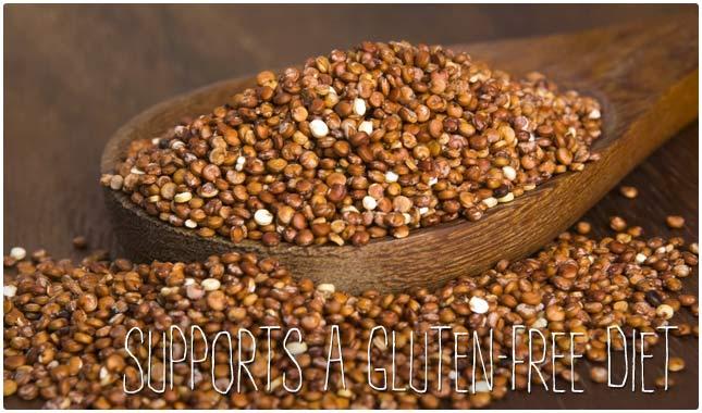 supports a gluten-free diet