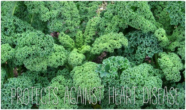 kale heart benefits