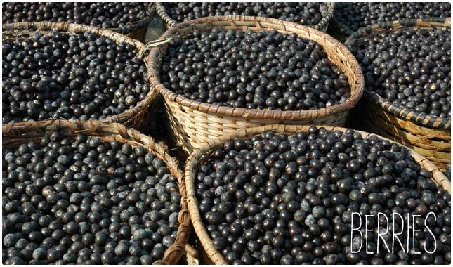 berries are biotin rich