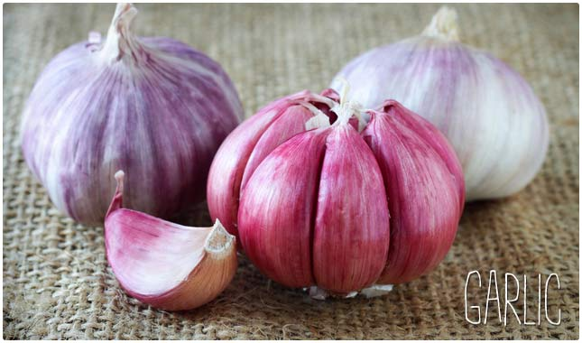 Vegetables Contain Zinc 26 foods high in zinc for overall good health health wholeness garlic workwithnaturefo