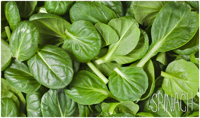 Vegetables Contain Zinc 26 foods high in zinc for overall good health health wholeness spinach workwithnaturefo