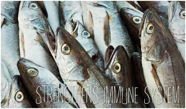 fish oil strengthens immune system