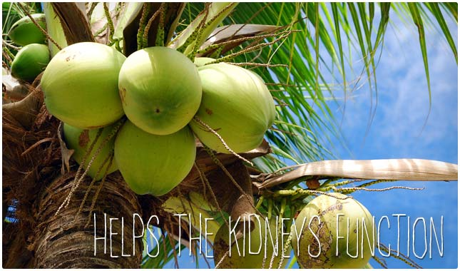 coconut water benefits for kidneys