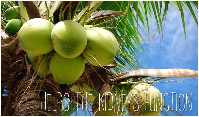 coconut water benefits for kidneys