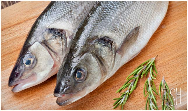 The only 15 zero carb foods for low carb diets resources for Fish only diet