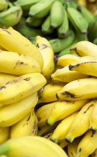 bananas are potassium rich