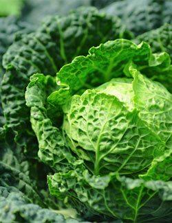 Kale is Super Healthy