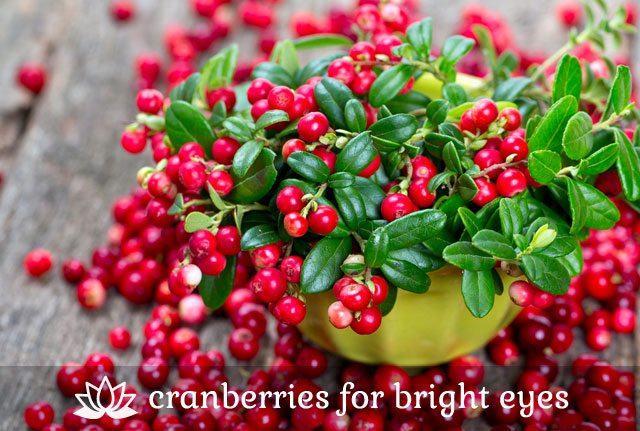 Cranberries- for bright eyes.
