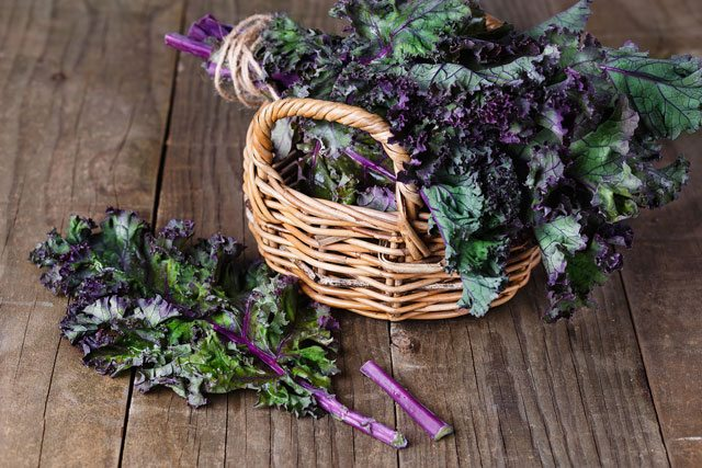 Diabetic-Friendly Kale
