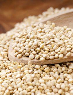 Fiber Rch Quinoa