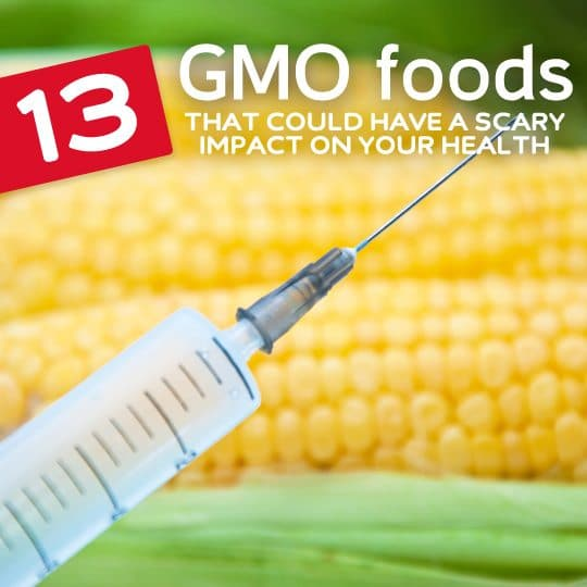 These are the foods you should try to avoid if you don't want to consume genetically modified foods…