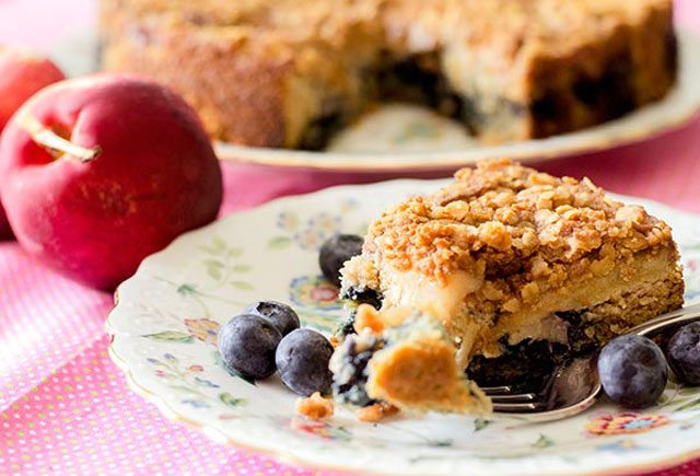 Nectarine and Blueberry Coffee Cake