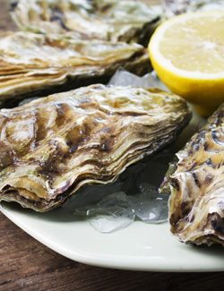 Oysters are High in Iron