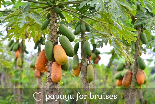 Papaya for Bruises