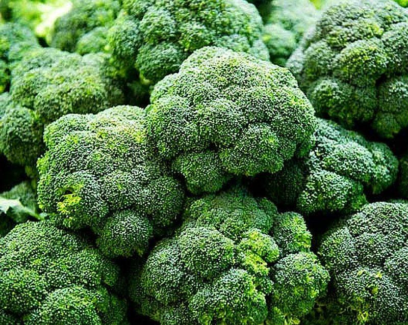 broccoli 1