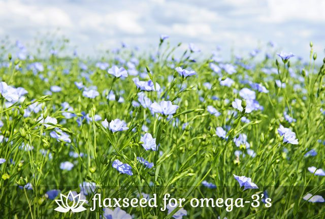 Flaxseed for Omega-3