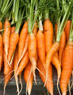 carrots are high in potassium
