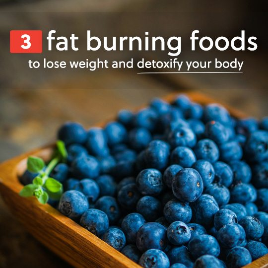 Eat more of these fat burning foods to lose weight and detoxify your body & mind.