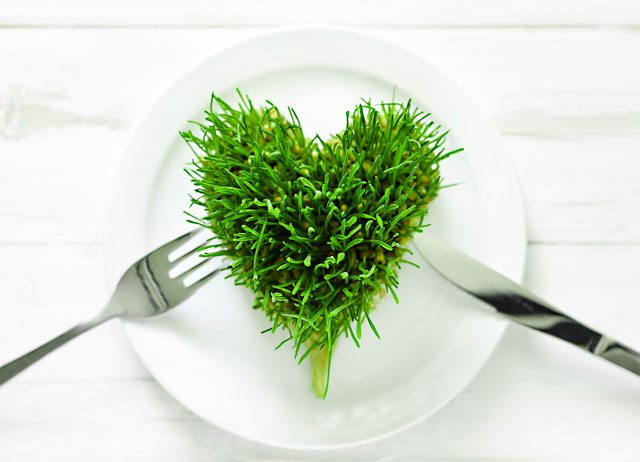 wheatgrass health