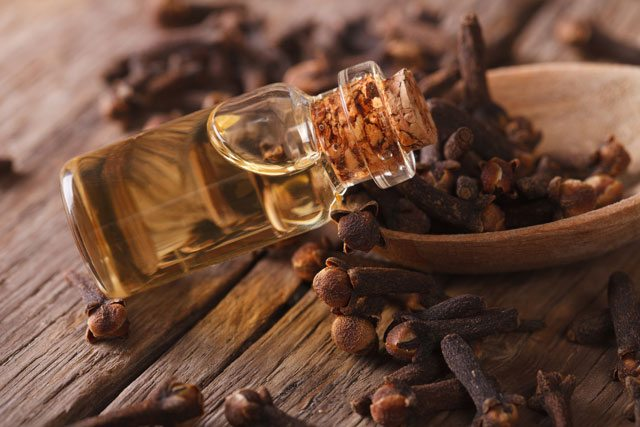 clove essential oil teeth