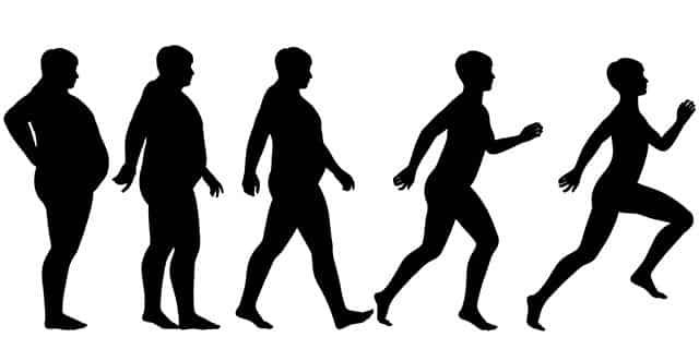 Evolutionary fasting