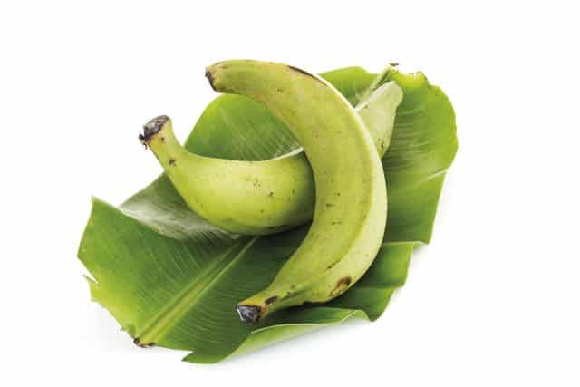 prebiotic plantain