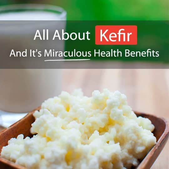 Kefir is one of the most potent probiotics around. Read on to find out how to make it, its numerous health benefits and some easy recipes!