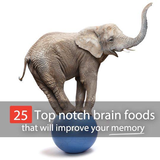 Brain foods for memory