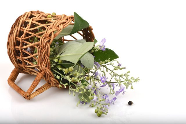 vitex for fertility