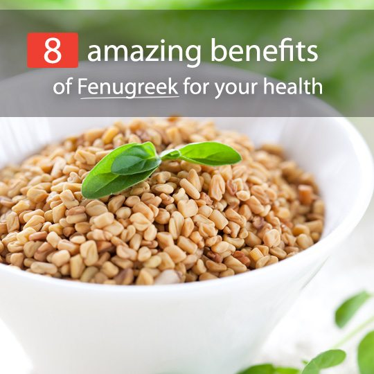 Fenugreek is famous as a spice, however, there is so much more to it. With loads of health benefits, it can be incorporated in the diet in various interesting ways.