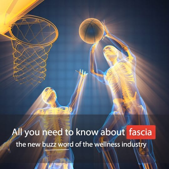 Find out all you need to know about fascia, and why it is so important...