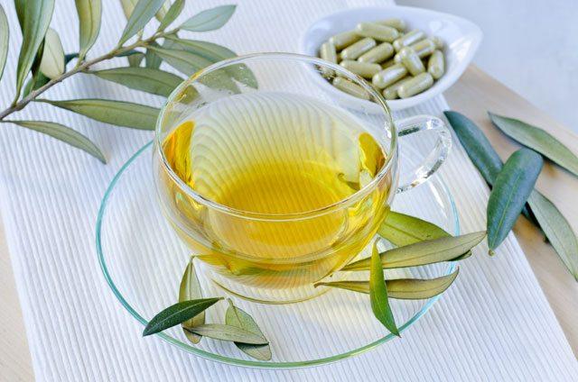 olive leaf gout