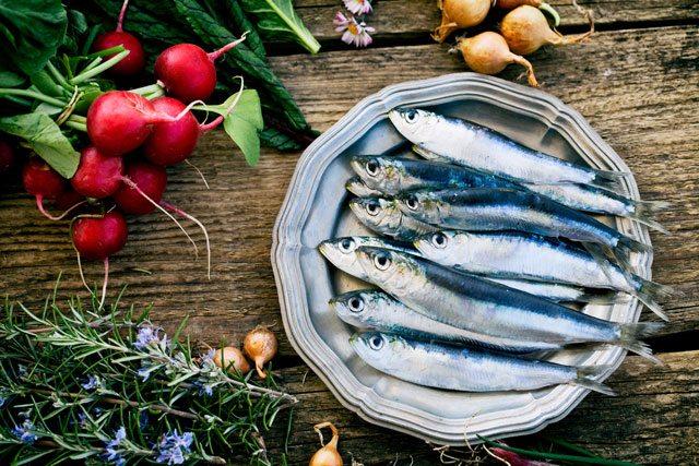 sardines gout