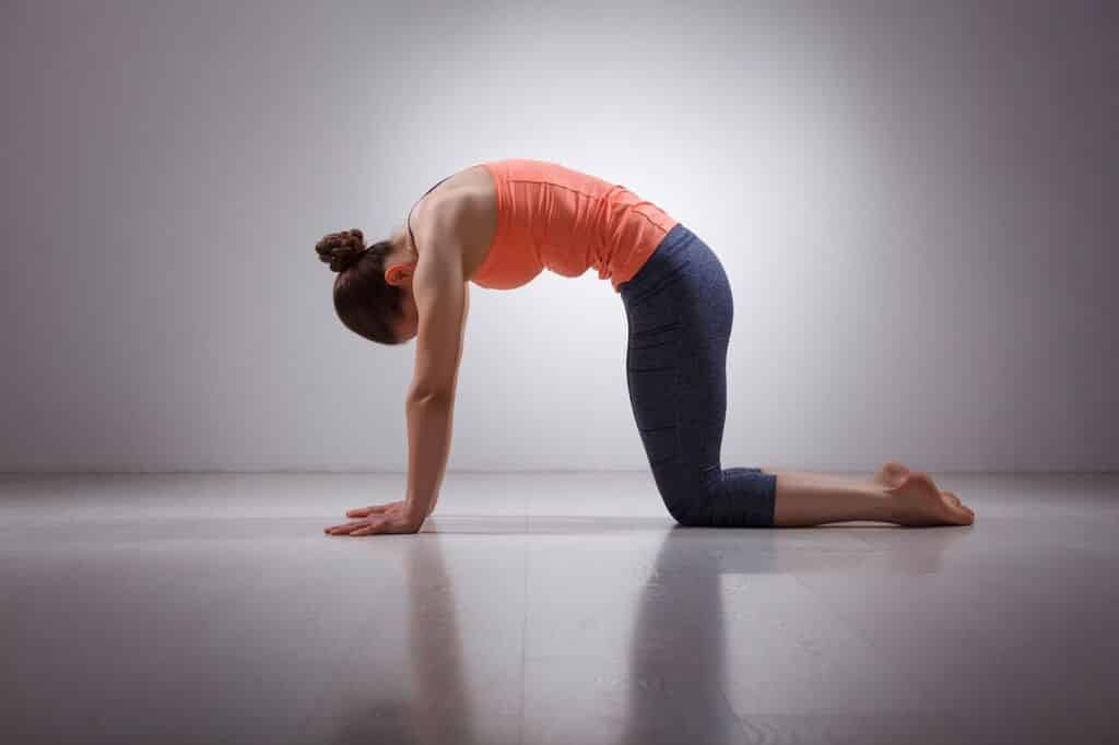 Yoga for digestion 2