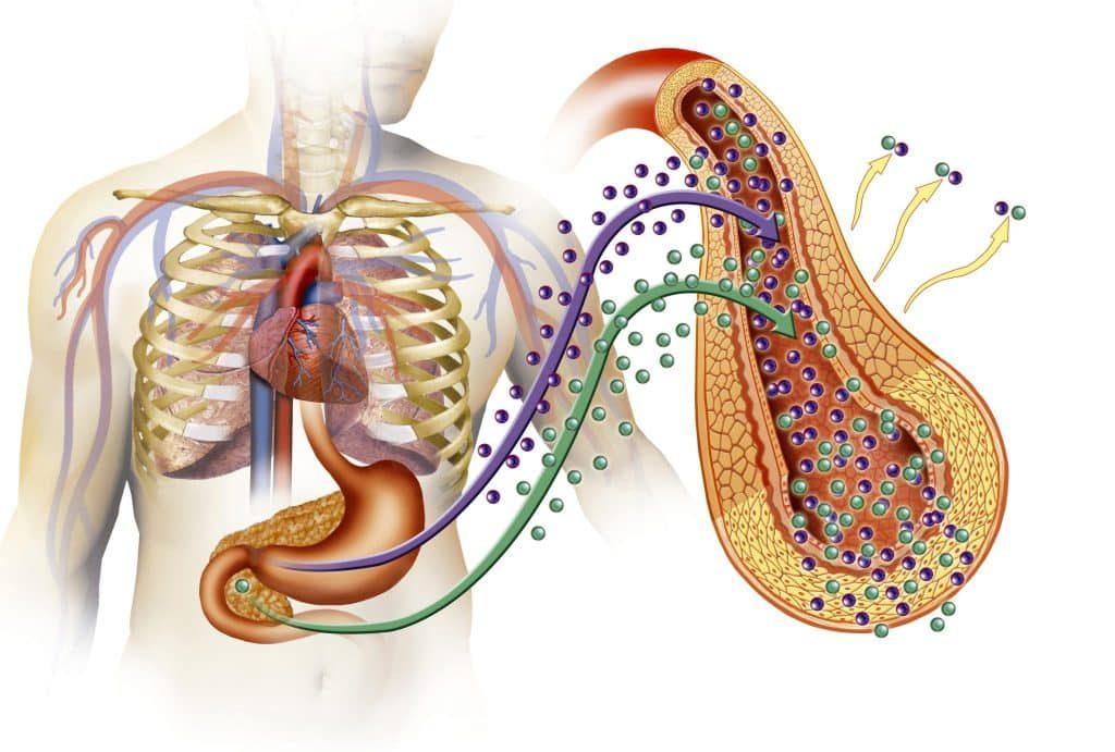 Treat Anaphylactic Shock Naturally