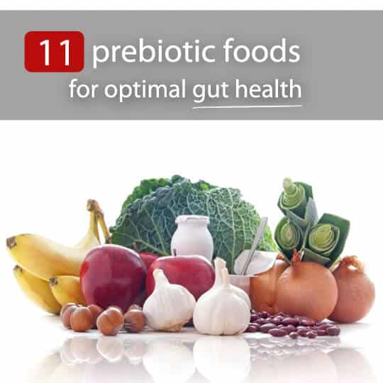 prebiotic foods