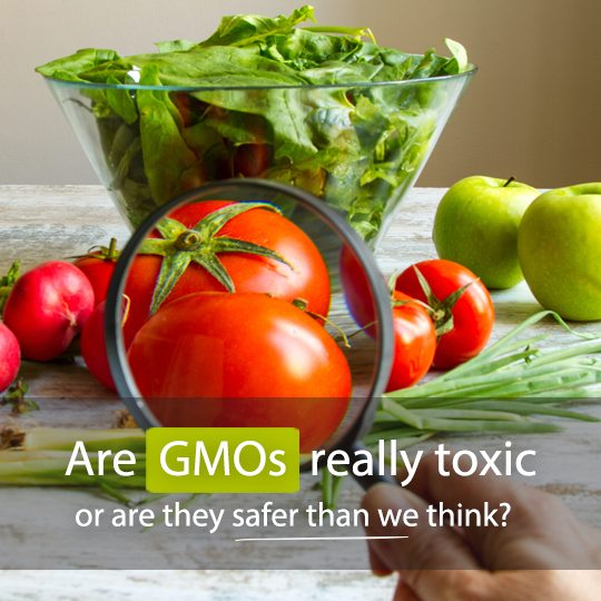 The evidence behind the highly controversial science of GMO...