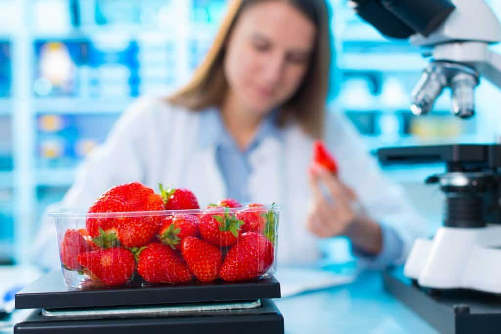 GMO lab