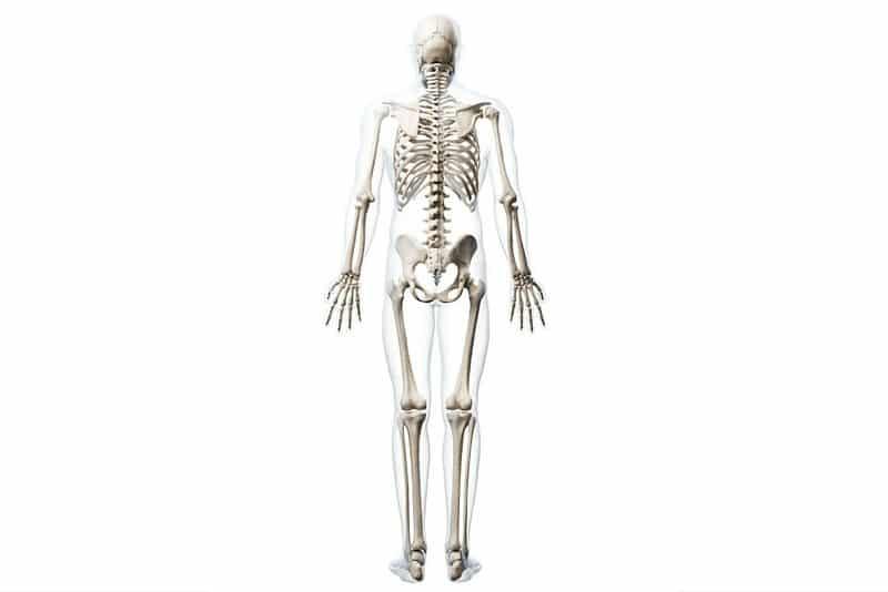 bone broth for bone health