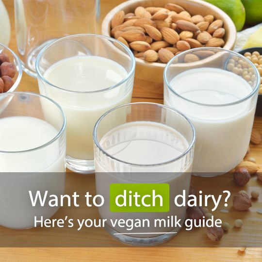 Whether you're lactose intolerant, vegan, or just want to cut back on animal products, there are a number of plant-based milk alternatives to choose from...
