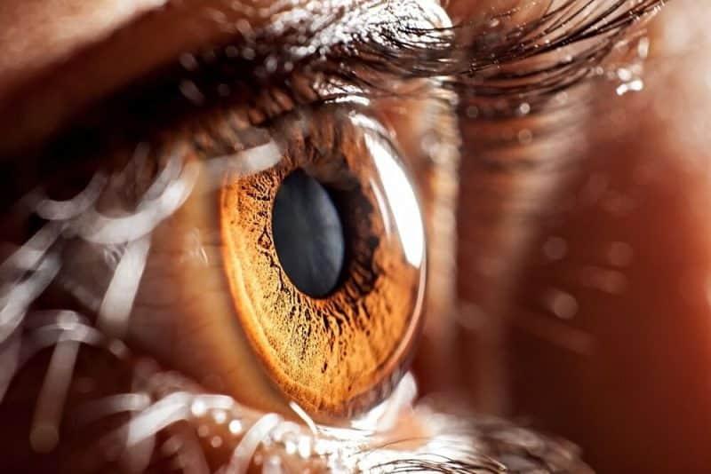 sleep-and-vision