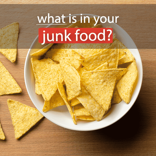 What Is In Your Junk Food?