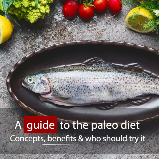 Find out what you can and can't eat on the paleo diet and whether it would suit you!